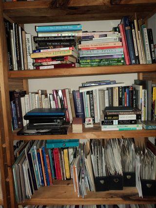 Library_megtoadrianeLO.
