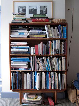 Wholeshelfdog chewed book_3940LO