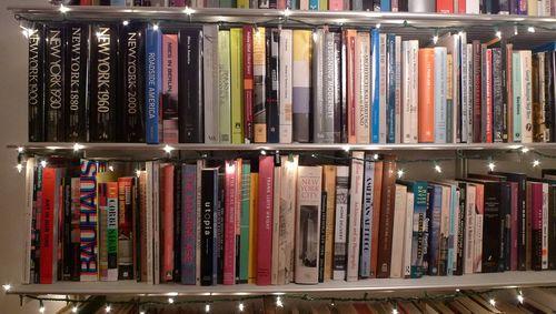 Esperdy Bookshelves Now xmas lightsLO