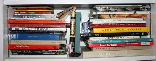 Stella rose bedroom bookcaseLO