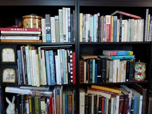Swaney_bookshelfLO